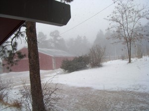 april-2009-blizzard