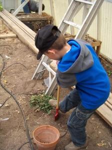 andrew-digging-weeds
